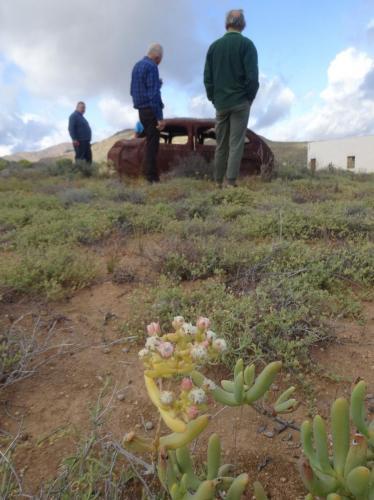 2018-08-13-Namaqualand-10
